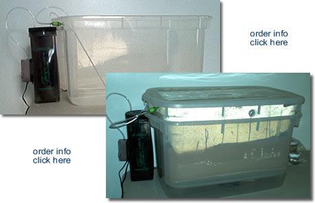 MYG mushroom kit combined with Self-Auto Mushroom growing system